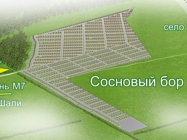 xsosnovy-plan_640x480_640x480.jpg.pagespeed.ic.fVePv8f5AM.jfif